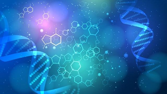 生化学とは何ですか?