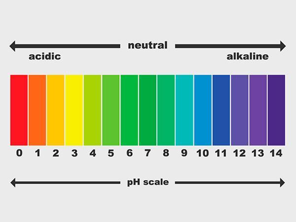 酸・塩基・pHについて